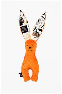 Obrazek Królik - Orange